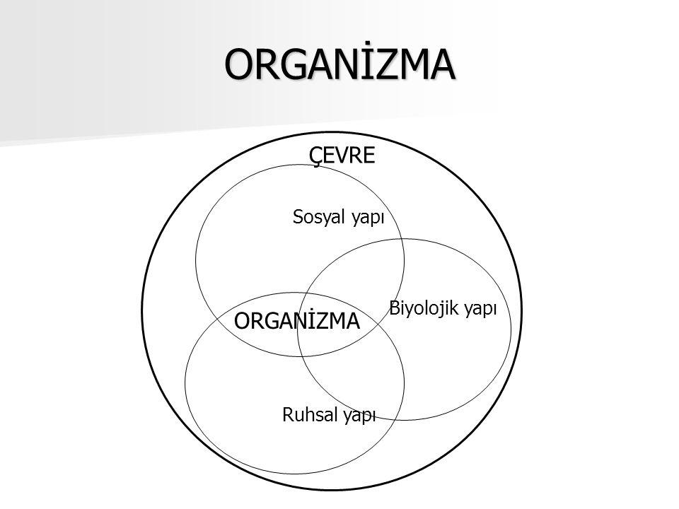 ORGANİZMA Sosyal yapı Biyolojik yapı Ruhsal yapı ÇEVRE ORGANİZMA
