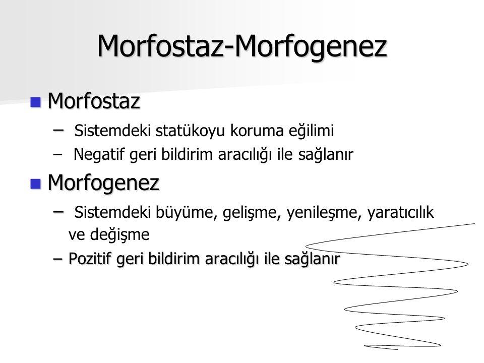 Morfostaz-Morfogenez Morfostaz Morfostaz – – Sistemdeki statükoyu koruma eğilimi – – Negatif geri bildirim aracılığı ile sağlanır Morfogenez Morfogenez – – Sistemdeki büyüme, gelişme, yenileşme, yaratıcılık ve değişme –Pozitif geri bildirim aracılığı ile sağlanır
