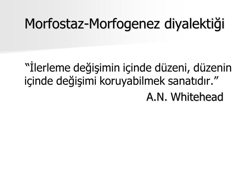 Morfostaz-Morfogenez diyalektiği İlerleme değişimin içinde düzeni, düzenin içinde değişimi koruyabilmek sanatıdır. A.N.