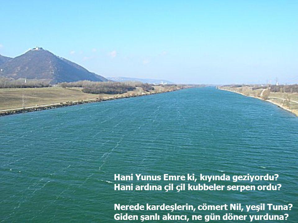 Hani Yunus Emre ki, kıyında geziyordu? Hani ardına çil çil kubbeler serpen ordu? Nerede kardeşlerin, cömert Nil, yeşil Tuna? Giden şanlı akıncı, ne gü