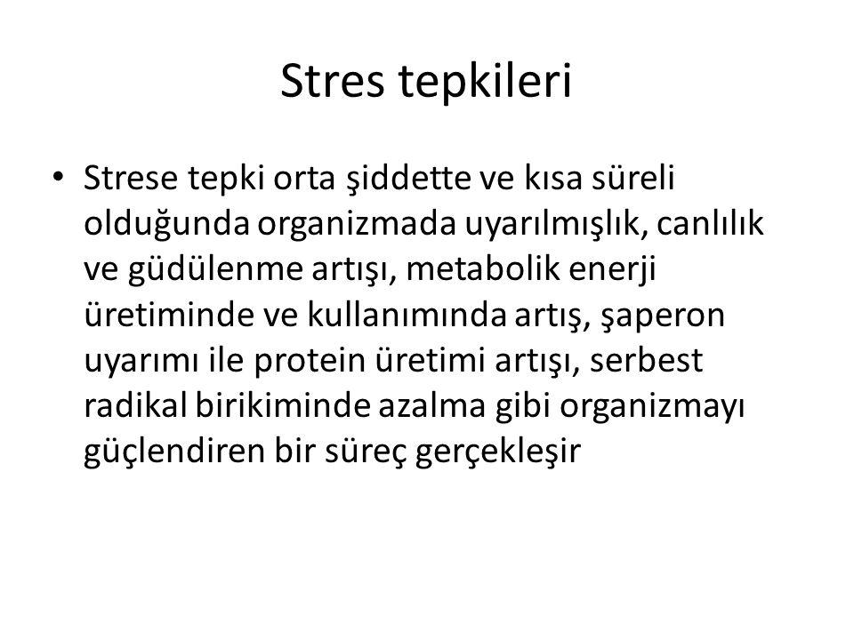 Stres tepkileri Strese tepki orta şiddette ve kısa süreli olduğunda organizmada uyarılmışlık, canlılık ve güdülenme artışı, metabolik enerji üretimind
