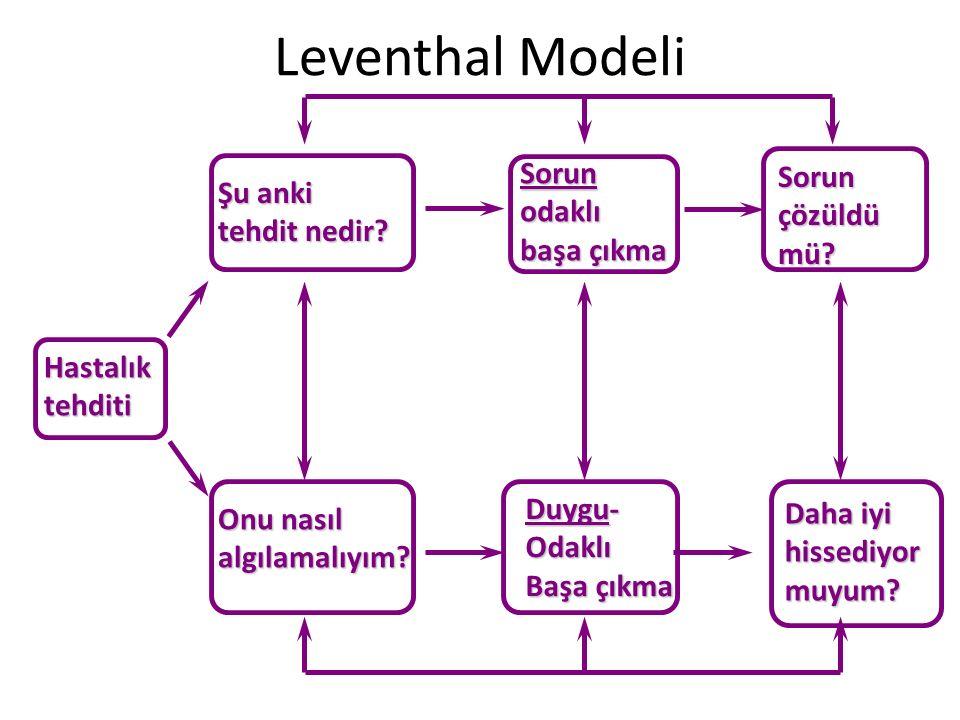 Leventhal ModeliHastalıktehditi Şu anki tehdit nedir? Onu nasıl algılamalıyım? Sorunodaklı başa çıkma Sorunçözüldümü? Daha iyi hissediyormuyum? Duygu-
