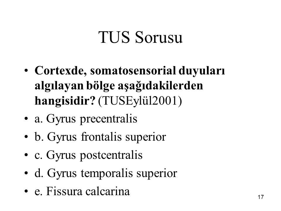 17 TUS Sorusu Cortexde, somatosensorial duyuları algılayan bölge aşağıdakilerden hangisidir? (TUSEylül2001) a. Gyrus precentralis b. Gyrus frontalis s