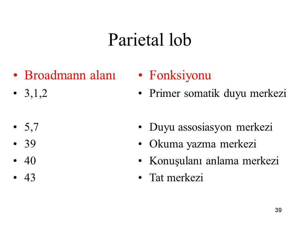 39 Parietal lob Broadmann alanı 3,1,2 5,7 39 40 43 Fonksiyonu Primer somatik duyu merkezi Duyu assosiasyon merkezi Okuma yazma merkezi Konuşulanı anla