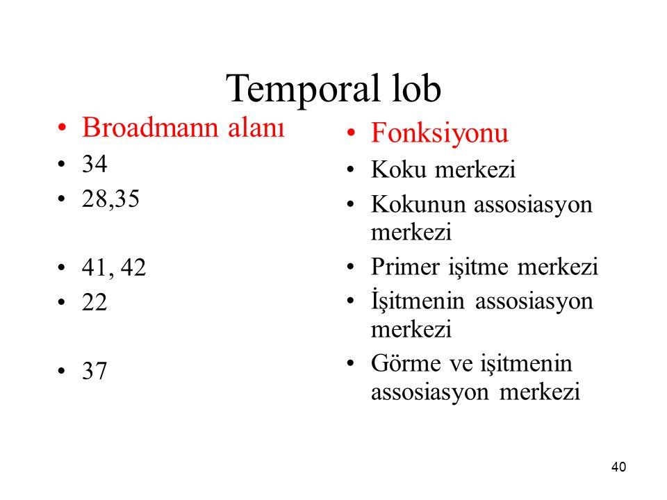 40 Temporal lob Broadmann alanı 34 28,35 41, 42 22 37 Fonksiyonu Koku merkezi Kokunun assosiasyon merkezi Primer işitme merkezi İşitmenin assosiasyon