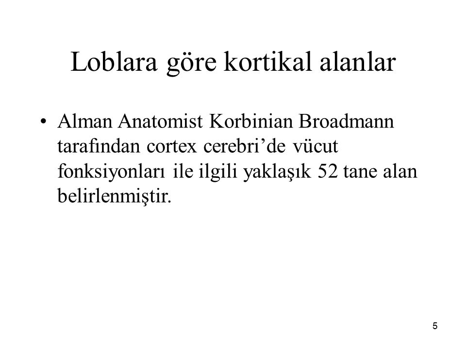 5 Loblara göre kortikal alanlar Alman Anatomist Korbinian Broadmann tarafından cortex cerebri'de vücut fonksiyonları ile ilgili yaklaşık 52 tane alan