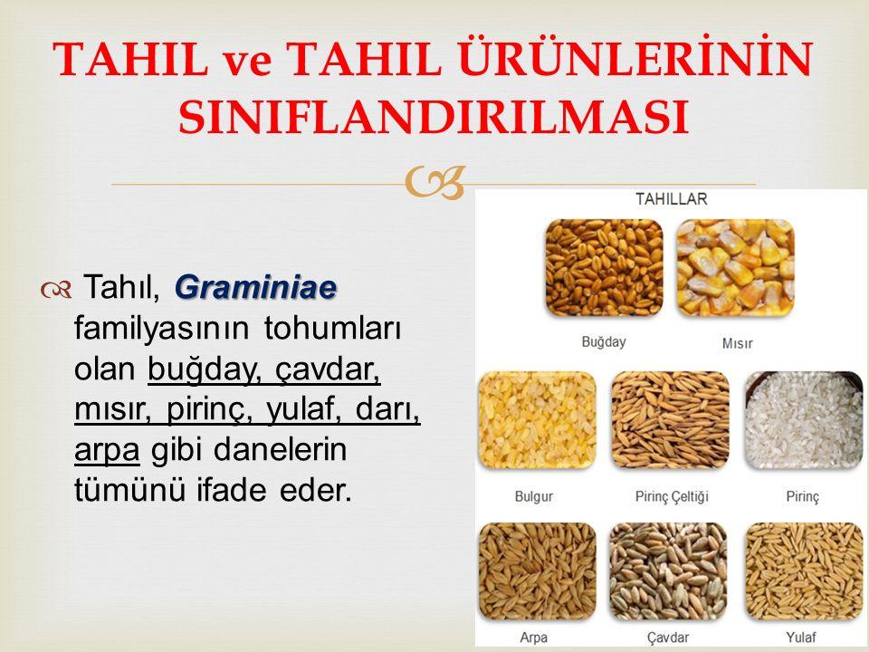  Graminiae  Tahıl, Graminiae familyasının tohumları olan buğday, çavdar, mısır, pirinç, yulaf, darı, arpa gibi danelerin tümünü ifade eder. TAHIL ve