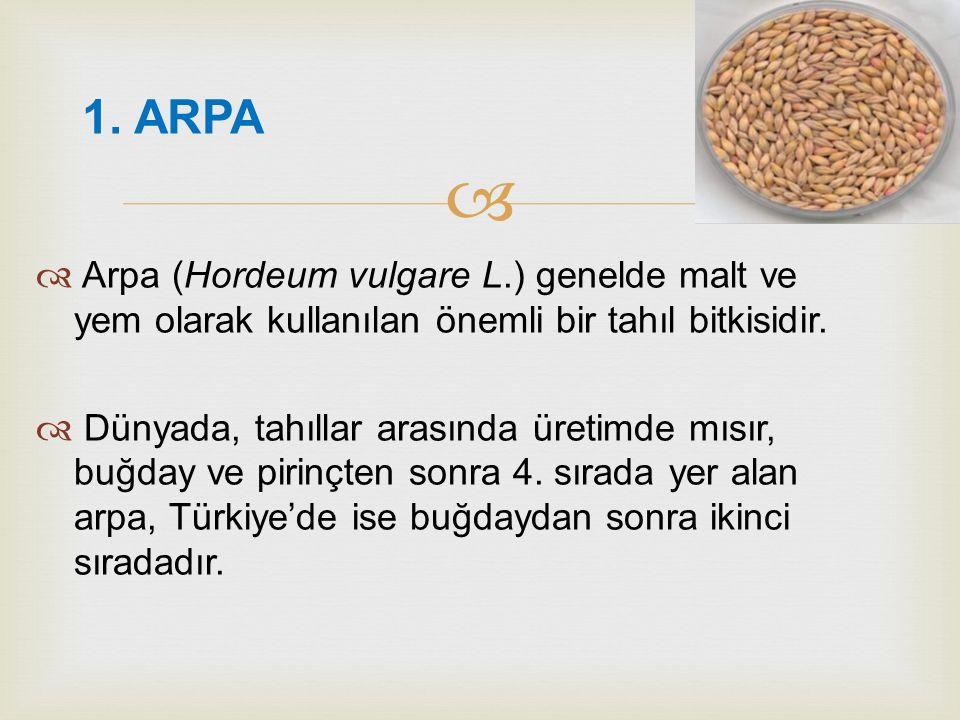   Arpa (Hordeum vulgare L.) genelde malt ve yem olarak kullanılan önemli bir tahıl bitkisidir.  Dünyada, tahıllar arasında üretimde mısır, buğday v