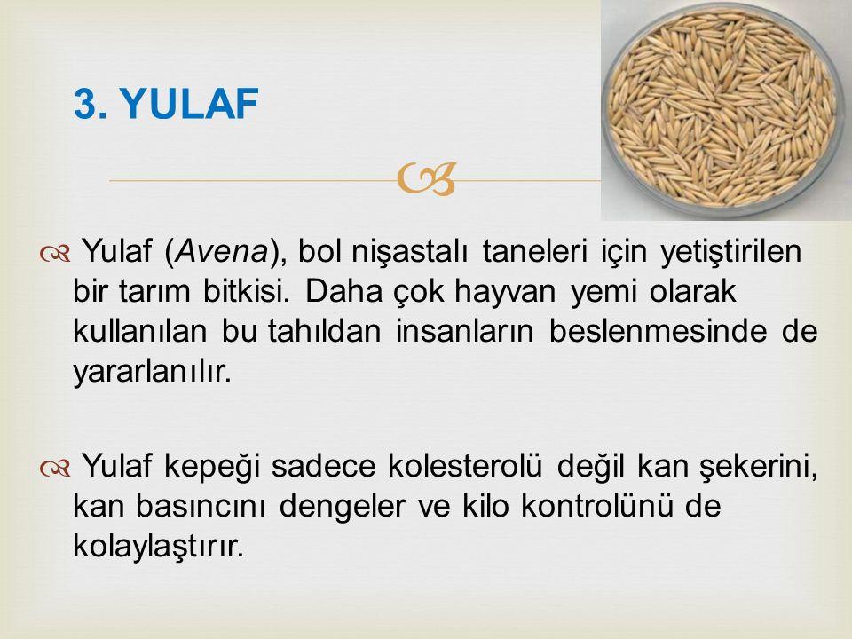   Yulaf (Avena), bol nişastalı taneleri için yetiştirilen bir tarım bitkisi. Daha çok hayvan yemi olarak kullanılan bu tahıldan insanların beslenmes