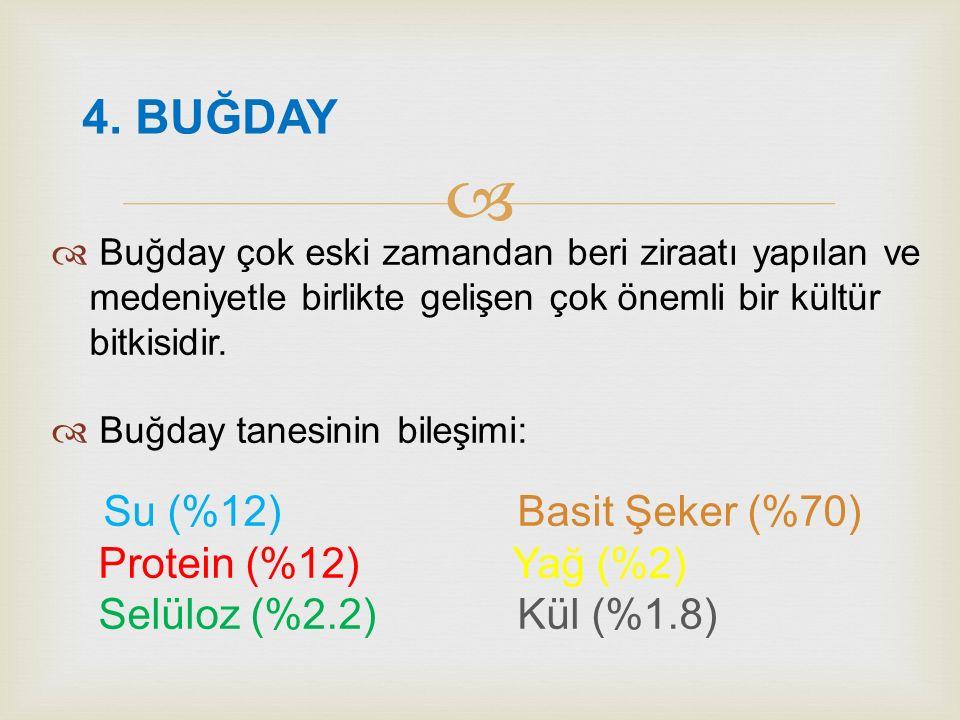   Ekmek mikrobiyel anlamda iki yolla bozulur: 3. EKMEKTE MİKROBİYEL BOZULMALAR