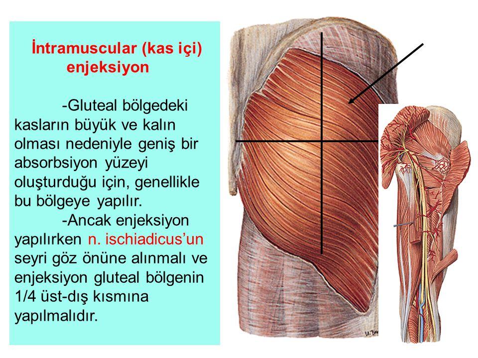 İntramuscular (kas içi) enjeksiyon -Gluteal bölgedeki kasların büyük ve kalın olması nedeniyle geniş bir absorbsiyon yüzeyi oluşturduğu için, genellik