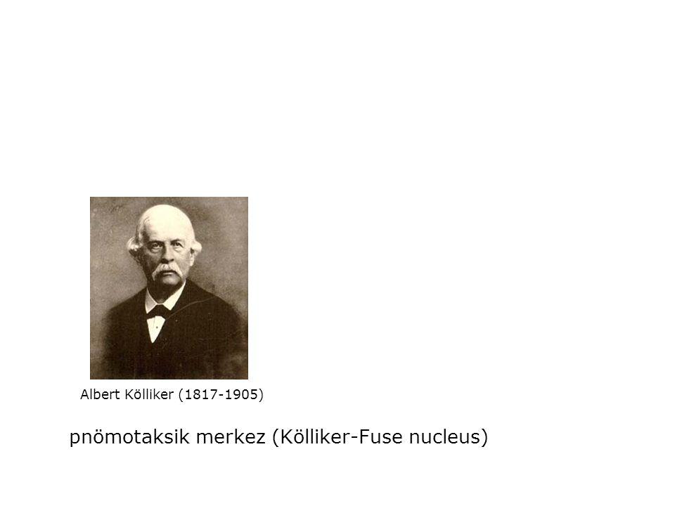 Albert Kölliker (1817-1905) pnömotaksik merkez (Kölliker-Fuse nucleus)