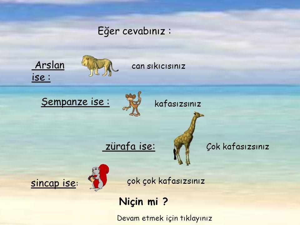 çok çok kafasızsınız Arslan ise : can sıkıcısınız Eğer cevabınız : Şempanze ise : kafasızsınız zürafa ise: Çok kafasızsınız sincap ise : Niçin mi .