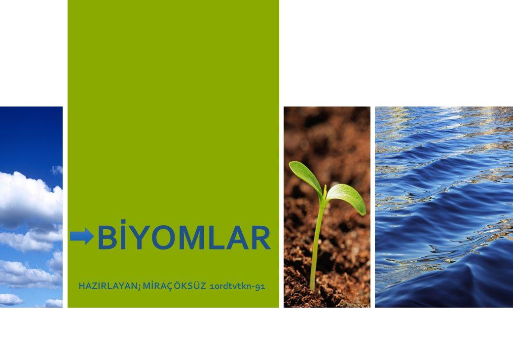 BİYOMLAR Aynı iklim koşullarının görüldüğü ve aynı bitki örtüsünün hakim olduğu çok büyük ekosistemlerdir.