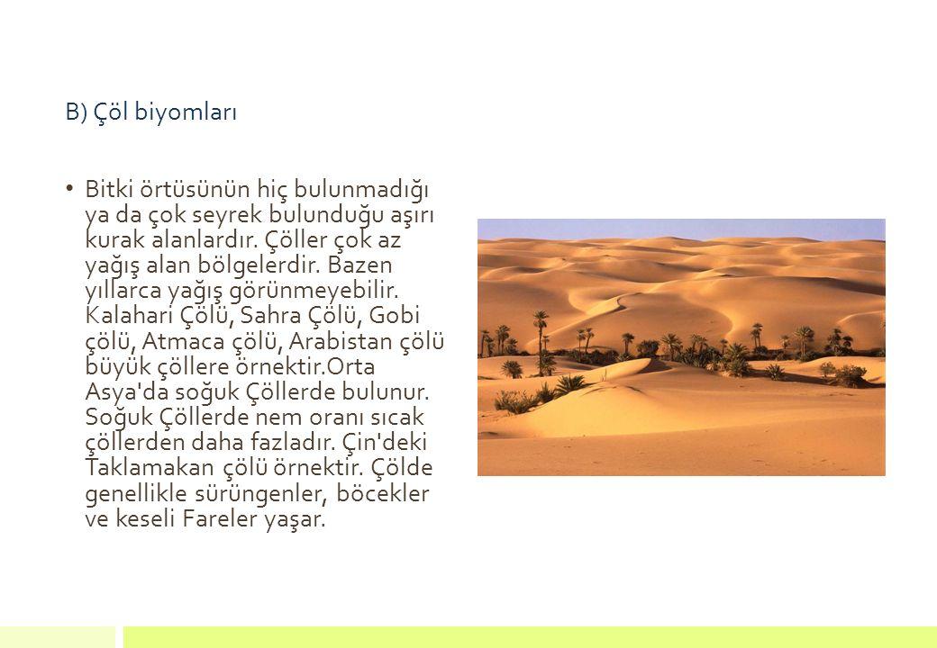 B) Çöl biyomları Bitki örtüsünün hiç bulunmadığı ya da çok seyrek bulunduğu aşırı kurak alanlardır. Çöller çok az yağış alan bölgelerdir. Bazen yıllar