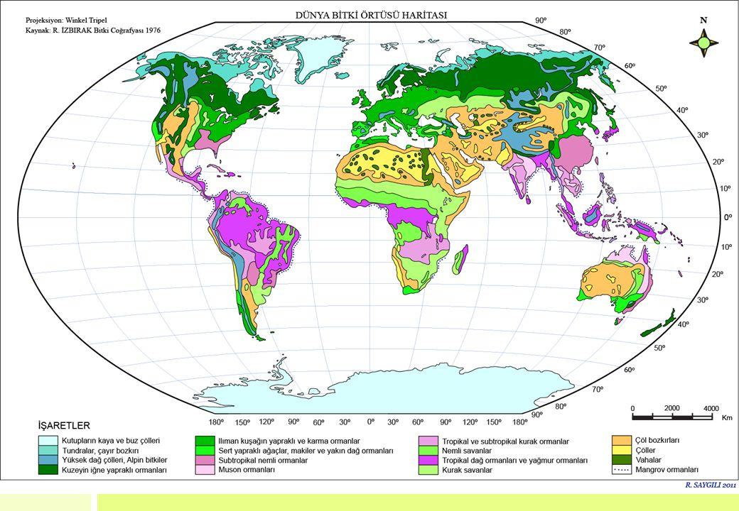BİYOM VE EKOSİSTEM ARASINDAKİ İLİŞKİ Yeryüzünün iklim kuşaklarına bağlı olarak geniş coğrafi bölgelerinde yer alan büyük ekosistem tiplerine biyom denir.