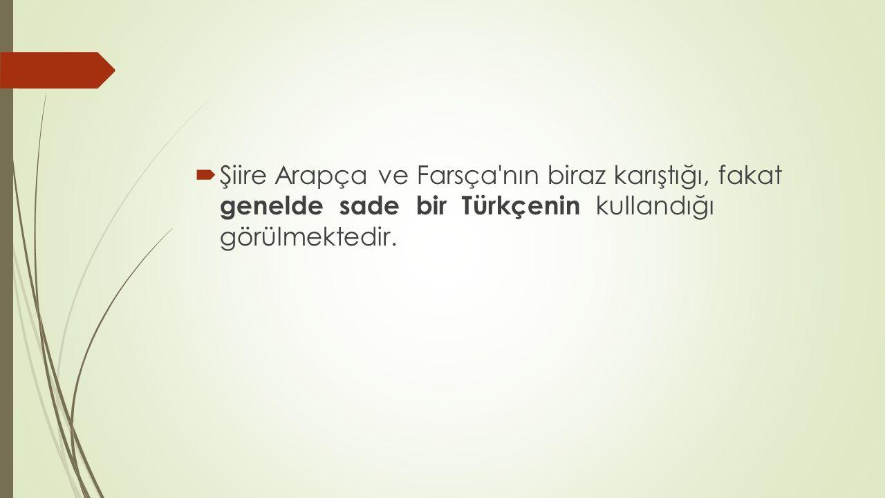  Şiire Arapça ve Farsça'nın biraz karıştığı, fakat genelde sade bir Türkçenin kullandığı görülmektedir.