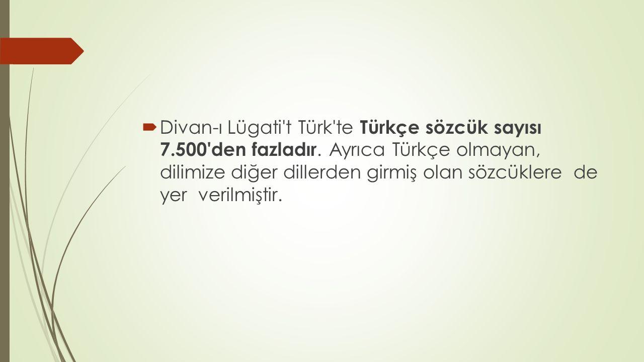  Divan-ı Lügati't Türk'te Türkçe sözcük sayısı 7.500'den fazladır. Ayrıca Türkçe olmayan, dilimize diğer dillerden girmiş olan sözcüklere de yer veri