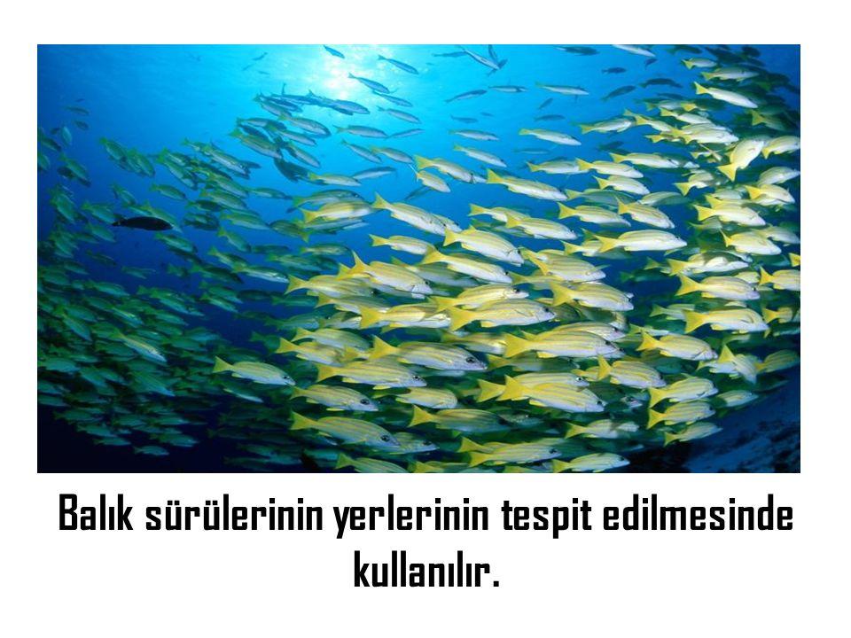 Balık sürülerinin yerlerinin tespit edilmesinde kullanılır.