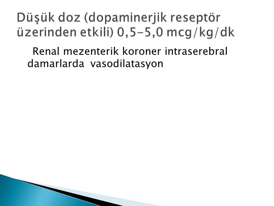 Renal mezenterik koroner intraserebral damarlarda vasodilatasyon