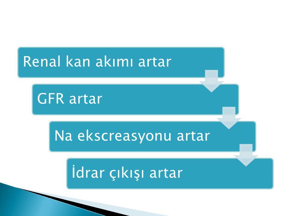 Renal kan akımı artarGFR artarNa ekscreasyonu artarİdrar çıkışı artar
