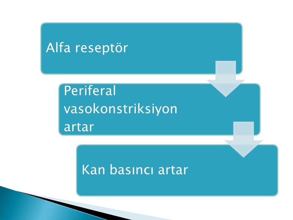 Alfa reseptör Periferal vasokonstriksiyon artar Kan basıncı artar