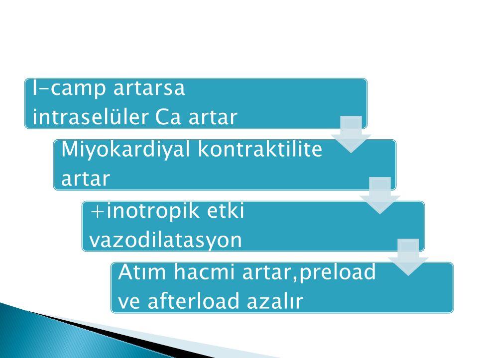 İ-camp artarsa intraselüler Ca artar Miyokardiyal kontraktilite artar +inotropik etki vazodilatasyon Atım hacmi artar,preload ve afterload azalır