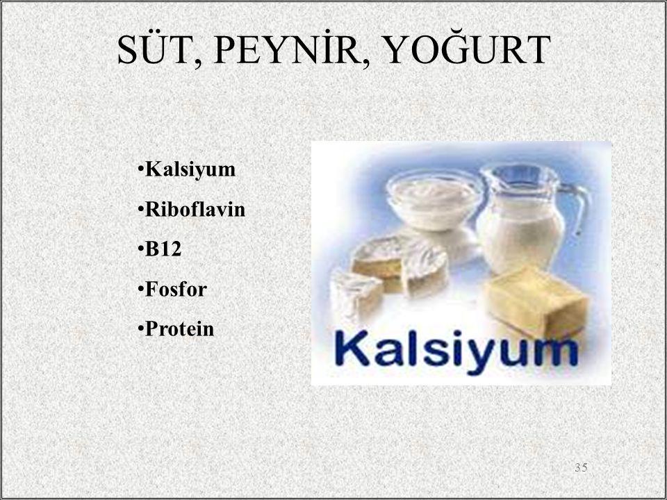 SÜT, PEYNİR, YOĞURT 35 Kalsiyum Riboflavin B12 Fosfor Protein