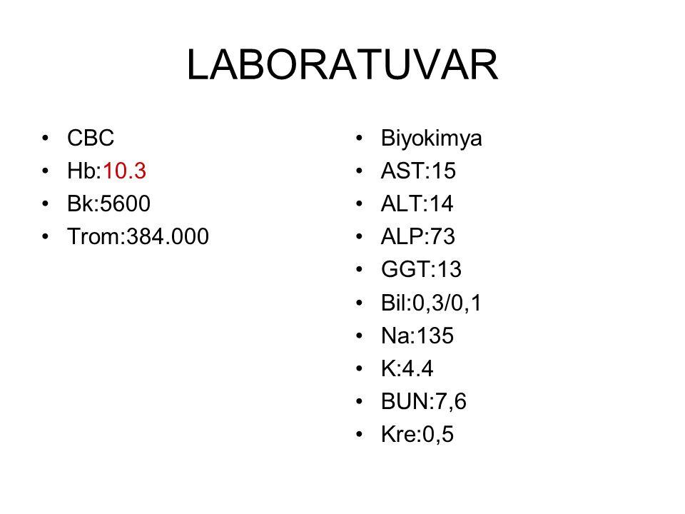 LABORATUVAR CBC Hb:10.3 Bk:5600 Trom:384.000 Biyokimya AST:15 ALT:14 ALP:73 GGT:13 Bil:0,3/0,1 Na:135 K:4.4 BUN:7,6 Kre:0,5