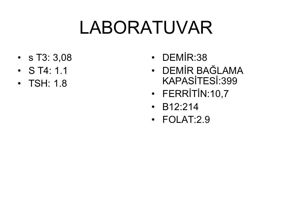 LİPİD ELEKTROFOREZİ Lipoprotein a:71 Lipoprotein b:69.4 Pre Beta:8.1 Pre Alfa:15.8