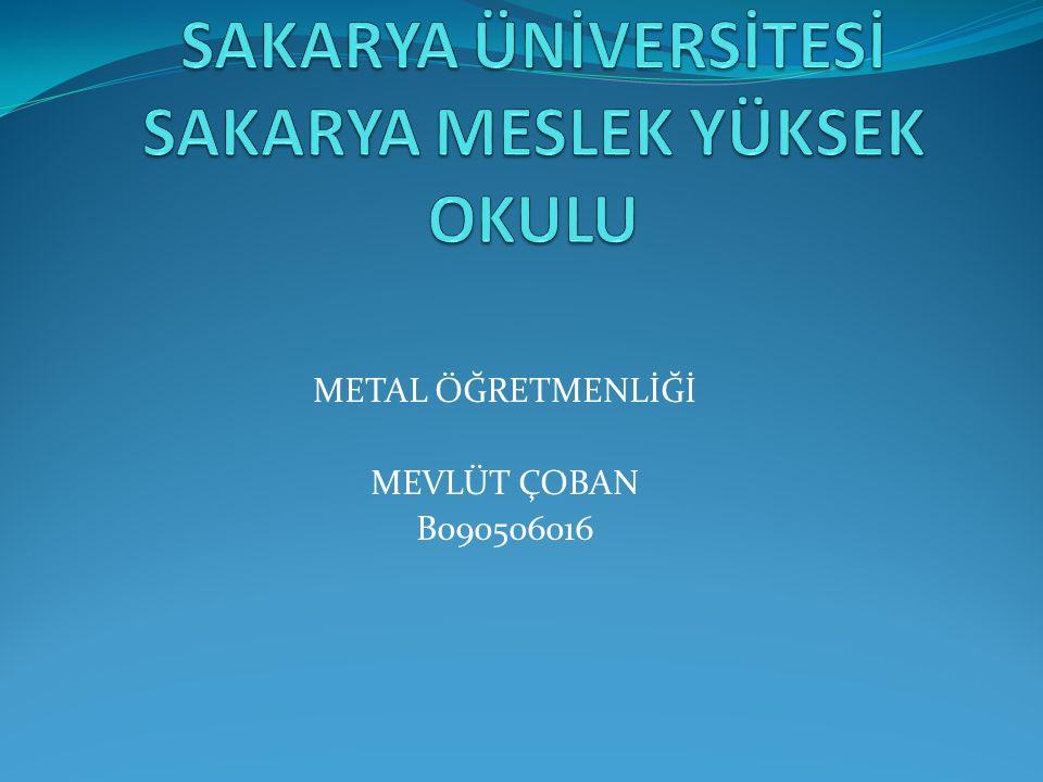 METAL ÖĞRETMENLİĞİ MEVLÜT ÇOBAN B090506016