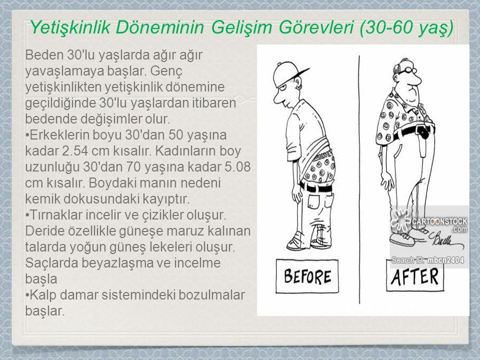 Beden 30'lu yaşlarda ağır ağır yavaşlamaya başlar. Genç yetişkinlikten yetişkinlik dönemine geçildiğinde 30'lu yaşlardan itibaren bedende değişimler o