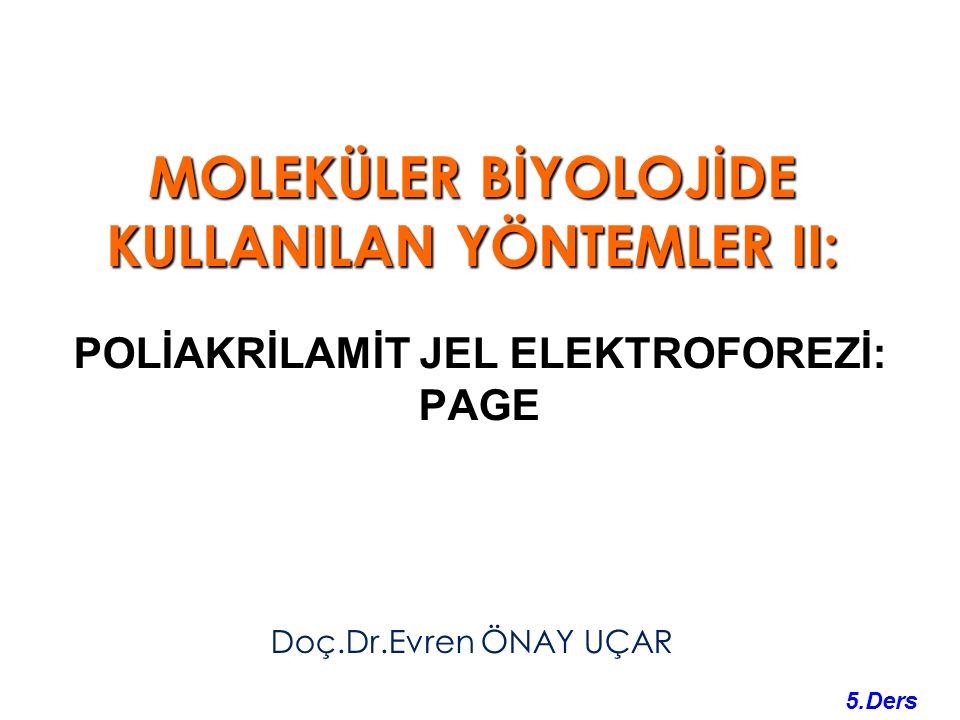 MOLEKÜLER BİYOLOJİDE KULLANILAN YÖNTEMLER II: Doç.Dr.Evren ÖNAY UÇAR 5.Ders POLİAKRİLAMİT JEL ELEKTROFOREZİ: PAGE