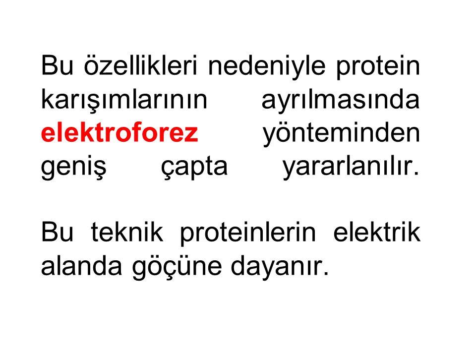 Bu özellikleri nedeniyle protein karışımlarının ayrılmasında elektroforez yönteminden geniş çapta yararlanılır.