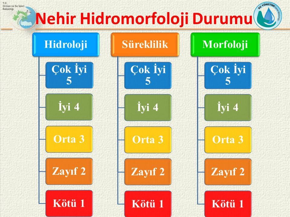 Nehir Hidromorfoloji Durumu Hidroloji Çok İyi 5 İyi 4Orta 3Zayıf 2Kötü 1 Süreklilik Çok İyi 5 İyi 4Orta 3Zayıf 2Kötü 1 Morfoloji Çok İyi 5 İyi 4Orta 3