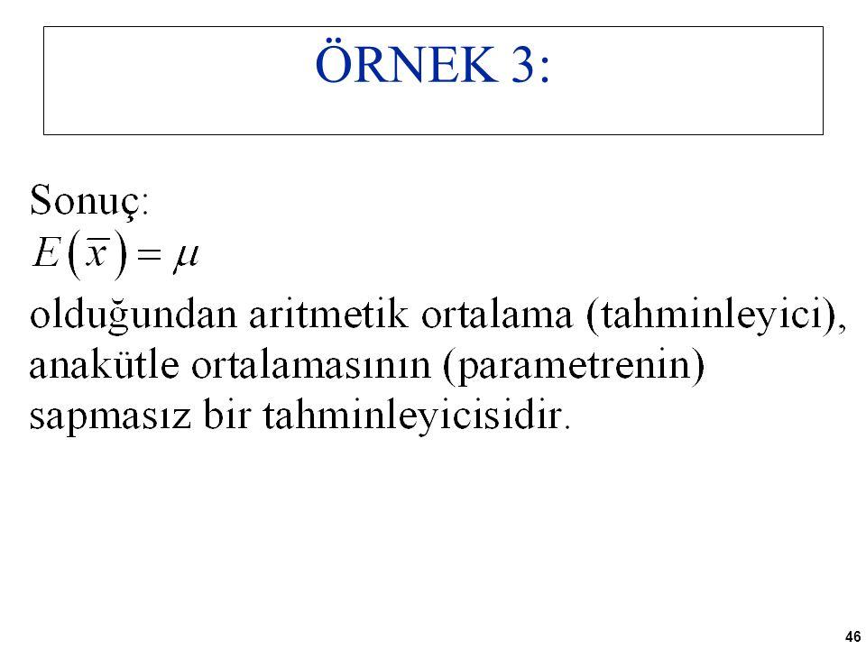 46 ÖRNEK 3: