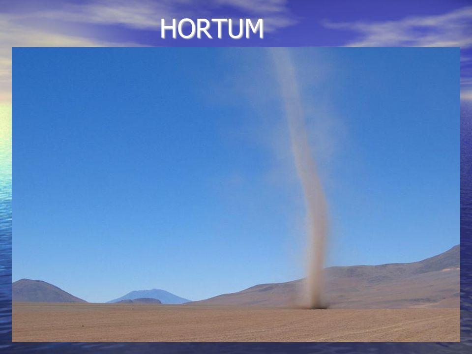 HORTUM HORTUM