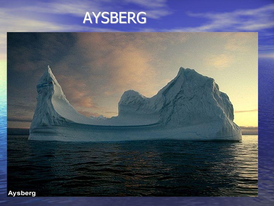 AYSBERG AYSBERG