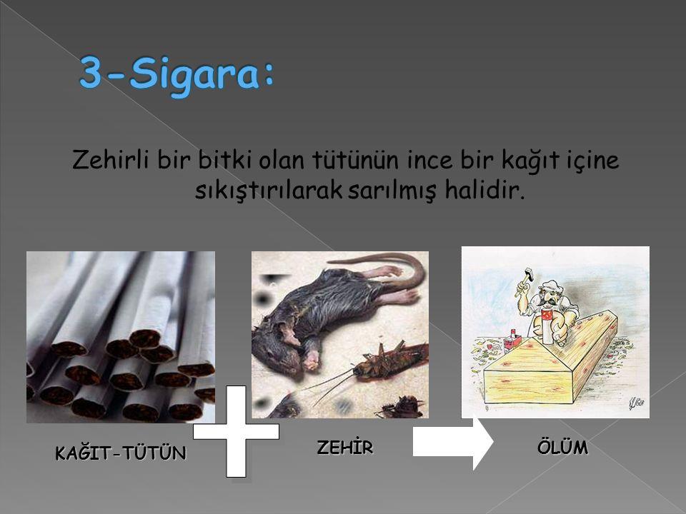 Zehirli bir bitki olan tütünün ince bir kağıt içine sıkıştırılarak sarılmış halidir.