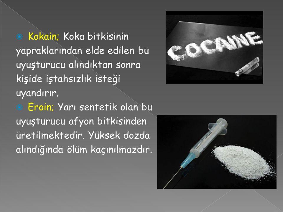  Kokain; Koka bitkisinin yapraklarından elde edilen bu uyuşturucu alındıktan sonra kişide iştahsızlık isteği uyandırır.