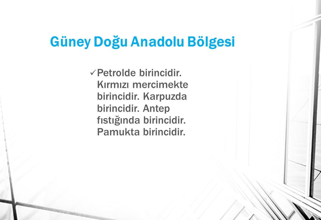 Güney Doğu Anadolu Bölgesi Petrolde birincidir.Kırmızı mercimekte birincidir.