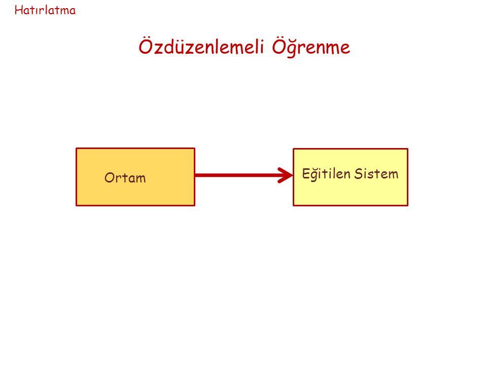 Ortam Özdüzenlemeli Öğrenme Eğitilen Sistem Hatırlatma