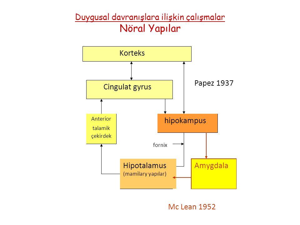 Duygusal davranışlara ilişkin çalışmalar Nöral Yapılar Korteks Cingulat gyrus Anterior talamik çekirdek Hipotalamus (mamilary yapılar) fornix hipokampus Amygdala Mc Lean 1952 Papez 1937