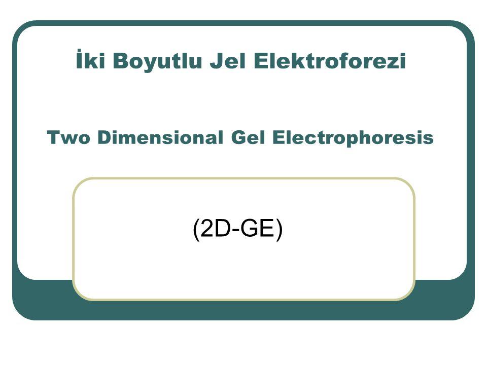 (ReadyPrepTM 2-D Starter Kit, BIO-RAD, 163-2105) Kit Bileşenleri (Kit Constituents)İçerik (Content) Rehidrasyon/Örnek Tamponu ( ReadyPrep Rehydration/Sample Buffer ) 8 M Üre %2 CHAPS 50 mM DTT %2 (w/v) Bio-Lyte ® 3/10 amfolit Bromofenol mavisi (eser miktarda) Dengeleme Tamponu I ( Equilibration Buffer I ) 6 M Üre %2 SDS (sodyum dodesil sülfat) 0.375 M Tris-HCl (pH 8.8) %20 Gliserol %2 (w/v) DTT Dengeleme Tamponu II ( Equilibration Buffer II ) 6 M Üre %2 SDS 0.375 M Tris-HCl (pH 8.8) %20 Gliserol %2.5 (w/v) İyodoasetamid Kapatma çözeltisi ( Overlaying Solution ) %0.5 Agaroz 25 mM Tris 192 mM Glisin %0.1 SDS Bromofenol mavisi (trace-eser)