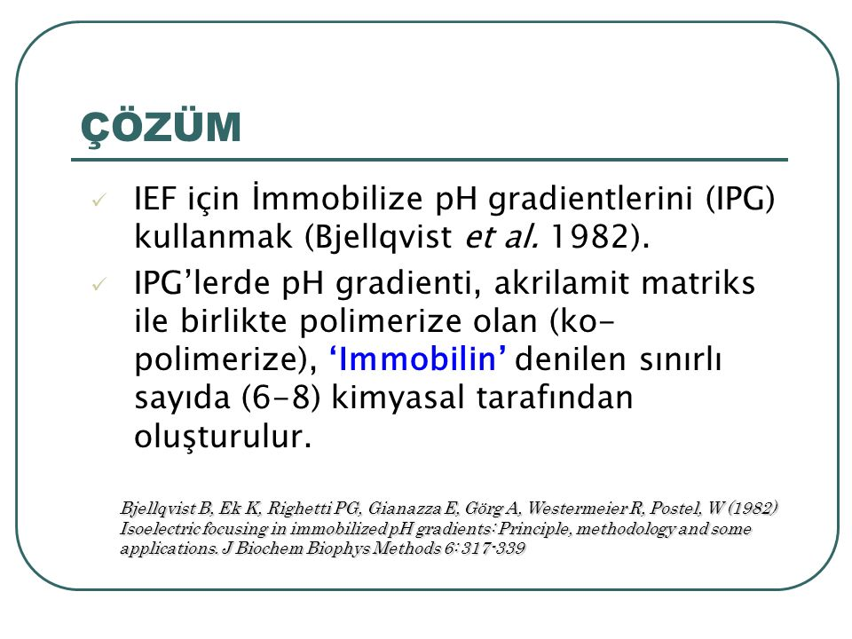ÇÖZÜM IEF için İmmobilize pH gradientlerini (IPG) kullanmak (Bjellqvist et al.
