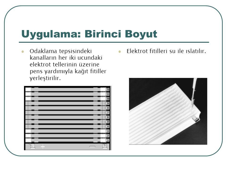 Uygulama: Birinci Boyut Odaklama tepsisindeki kanalların her iki ucundaki elektrot tellerinin üzerine pens yardımıyla kağıt fitiller yerleştirilir.