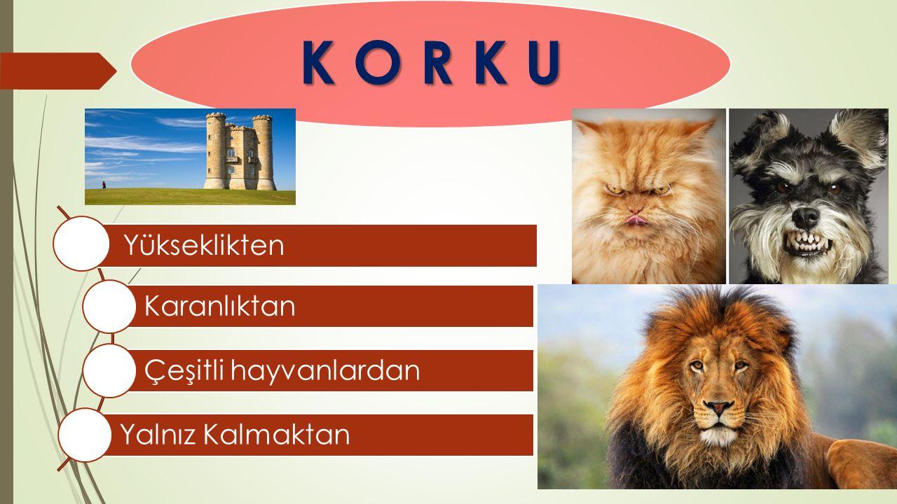 K O R K U Yükseklikten Karanlıktan Çeşitli hayvanlardan Yalnız Kalmaktan