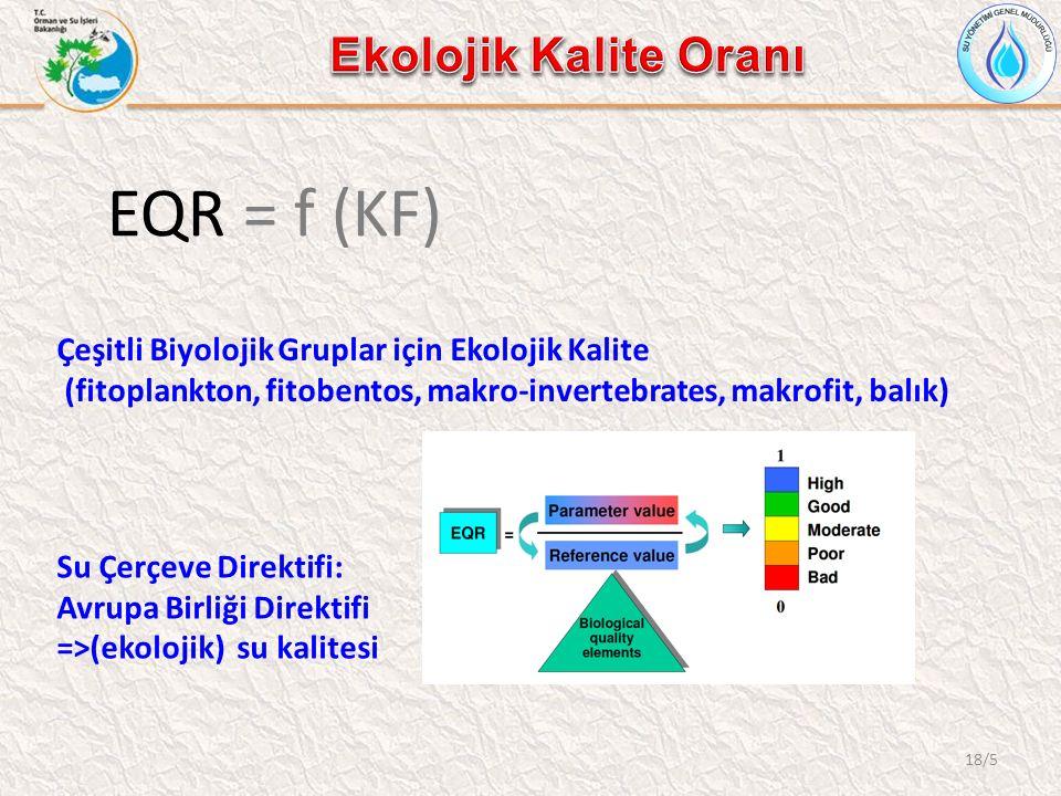 18/5 EQR = f (KF) Çeşitli Biyolojik Gruplar için Ekolojik Kalite (fitoplankton, fitobentos, makro-invertebrates, makrofit, balık) Su Çerçeve Direktifi: Avrupa Birliği Direktifi =>(ekolojik) su kalitesi