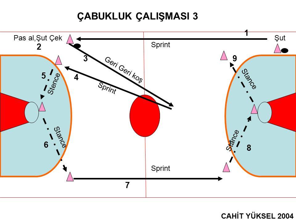 ÇABUKLUK ÇALIŞMASI 14 CAHİT YÜKSEL 2004 1 2 3 4 5 6 7 89 10 = Stance = Sprint