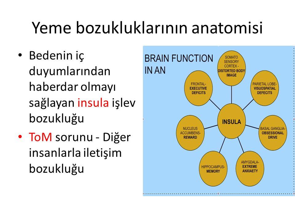 Yeme bozukluklarının anatomisi Bedenin iç duyumlarından haberdar olmayı sağlayan insula işlev bozukluğu ToM sorunu - Diğer insanlarla iletişim bozuklu